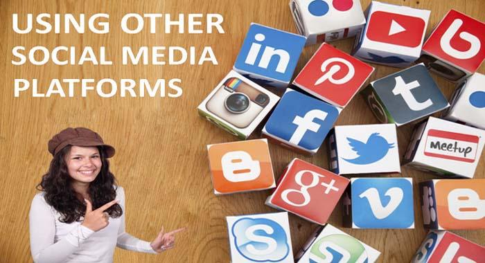 Using other social media platforms
